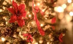 元彼とクリスマスまでに復縁するなら電話占いにお任せ